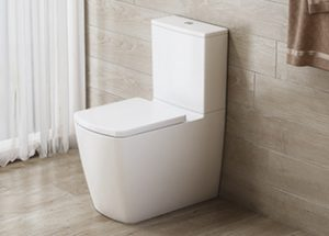 Ravine Rimless Comfort Height WC Toilet by Imex